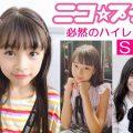 ニコモ・プチモ・女子小学生モデル